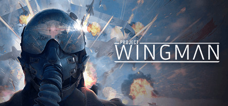 Project Wingman Download Free PC Game